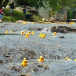 Carleton Place Canoe Club Annual Duck Derby May 5