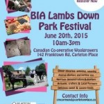 BIA Lambs Down Park Festival