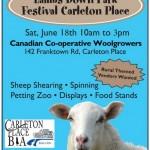 Lambs down Park Festival