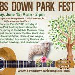Lambs Down Park Festival 2019