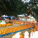 Fall Spooktacular Party at Lakeside Park