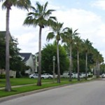 Snapshot of State of the Real Estate Market in Celebration FL