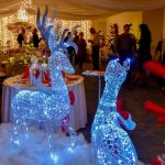 VIP Winter Wonderland