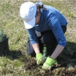 Thunder Bay's Arbor Day Tree Planting Event