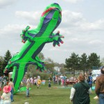 Kite Festival 2012 – Come fly with us!
