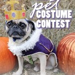 12th Annual Doggie Door Pet Costume Contest