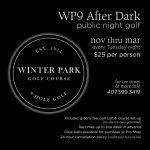 WP9 After Dark